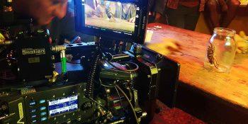 Eksotične živali za videoprodukcijo